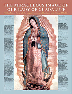 Miraculous Image of Our Lady of Guadalupe Poster